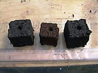 Biochar Soil Block