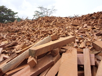 Waste wood from mill in Kumba, Cameroon
