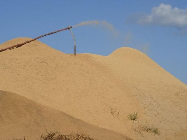 Sawdust_1