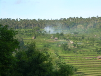 Burning rice biomass